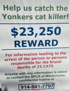 Memorial service held for cats killed in Yonkers 5/10/14