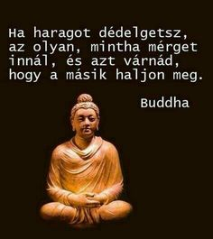 Jokes Quotes, Wisdom Quotes, Life Learning, Clever Quotes, Reiki, Sarcasm, Buddha, Haha, Therapy
