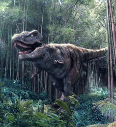 The Tyrannosaurus rex follows you with watchful hungry eyes, but unlike his likeness in the Jurassic Park film, this robot – found at the world's most impressive dinosaur theme park – is unlikely to snap you up for dinner.