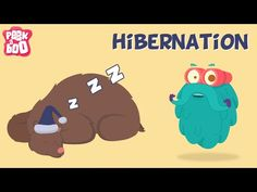 Letter B // Bears // Learn about the Hibernation with Dr. Did you know that some animals go into deep sleep during winters? Yes, sometimes they sleep for months. 1st Grade Science, Preschool Science, Teaching Science, Science Activities, Winter Activities, Library Activities, Science Videos, Preschool Curriculum, Social Science