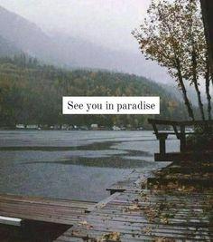 Life In Paradise, Cinema, Movies, Movie Theater