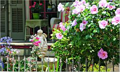 New Orleans Homesand Yards,Blooming Summer New Orleans Homes, Historic Homes, Louisiana, Townhouse, Yards, Condo, Bloom, Real Estate, News