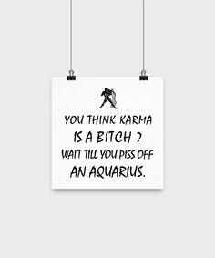 Aquarius Zodiac Poster-Karma is a Bitch? Piss off an Aquarius.
