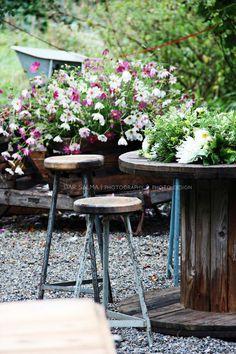 Outdoor Furniture Sets, Outdoor Decor, Flower Farm, September, Flowers, Plants, Royal Icing Flowers, Flower, Florals