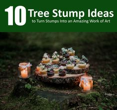 Got boring stumps that you don't want to get rid of? Try out these tips to make the most out of it. Call 0414 627 627 for tree services. Stump Removal, 10 Tree, Tree Stump, Rid, Triangle, Facts, Content, Amazing, Ideas