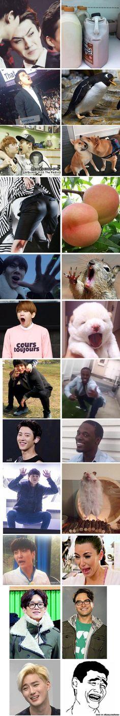 EXO Look Alikes | allkpop Meme Center