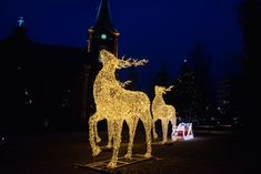 Jyväskylä is the City of Light in Finland – read more about light projects and participate in the annual spectacular City of Light festival! White Christmas Snow, Christmas And New Year, Christmas Time, Light Project, November 2019, City Lights, Selfies, Centre, Decorations