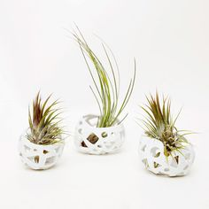 Linda Hsiao Porcelain Air Craters for Poketo