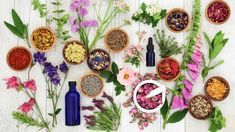 Jitrocelový sirup je skvělý pomocník, který oceníte během celého roku. Allergy Remedies, Eczema Remedies, Natural Remedies, Herbal Treatment, Natural Treatments, School Lunch Recipes, Psoriasis Symptoms, Oils For Sleep, Healthy Snacks For Adults
