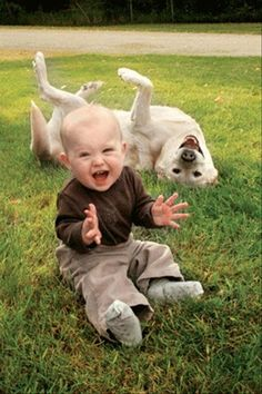 cute dog with baby