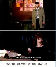 I hear that a lot of people don't like Rowena, but I love her a lot