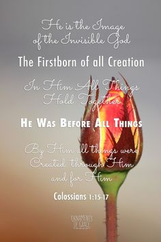 http://ornamentsofgrace.com/the-firstborn-of-all-creation/