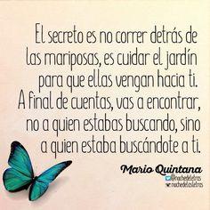 〽️ El secreto es no correr detrás de las mariposas...