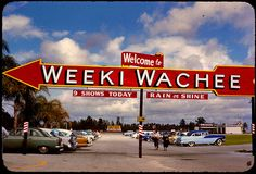 Weeki Wachee Florida in the Check out the fantastic vintage cars in the parking lot. Vintage Florida, Old Florida, Florida Travel, Tampa Florida, Florida Maps, Clearwater Florida, Florida Girl, Naples Florida, Florida Vacation