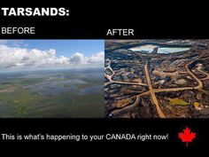 Tar sands devastate the environment.