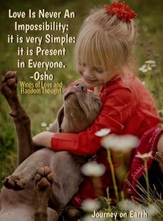 Love Is Never An Impossibility: it is very Simple: it is Present in Everyone. Osho Wings of Love and Random Thought