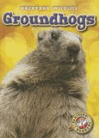 Developed by literacy experts for students in kindergarten through grade three, this book introduces groundhogs to young readers through leveled text and related photos
