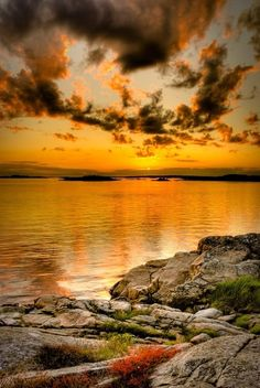 Beautiful Golden shores