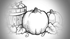 Top 10 Free Printable Pumpkin Patch Coloring Pages Online