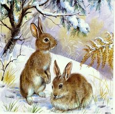 ru / Photo # 94 – Mice, bears, bunnies, hedgehogs … – … – About Hobby Sports Cross Paintings, Animal Paintings, Animal Drawings, Cute Baby Animals, Animals And Pets, Lapin Art, Bunny Painting, Hunting Art, Rabbit Art