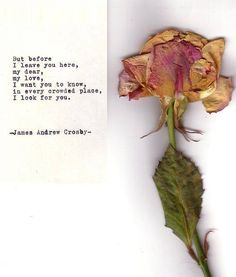 I look for you - James Andrew Crosby