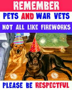 Pets and war vets not all like fireworks please be courteous in your neighborhood