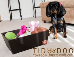 A toy box that trains your dog to pick up their toys! by The Tidy Dog — Kickstarter