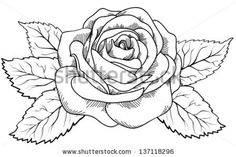 rose drawing outline - Google Search