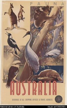 Fauna Australia, poster by James Northfield (1887-1973) , one of Australia's finest poster artists.