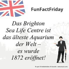 #FunFactFriday bei THE BRITISH SHOP: Das Brighton Sea Life Centre ist das älteste Aquarium der Welt – es wurde 1872 eröffnet! #aquarium #brighton #sealifecenter #sealifecenterbrighton #brightonsealifecenter #historyfact #wissenswertes #unnützefakten #thebritishshop #verybritish #diefeineenglischeart