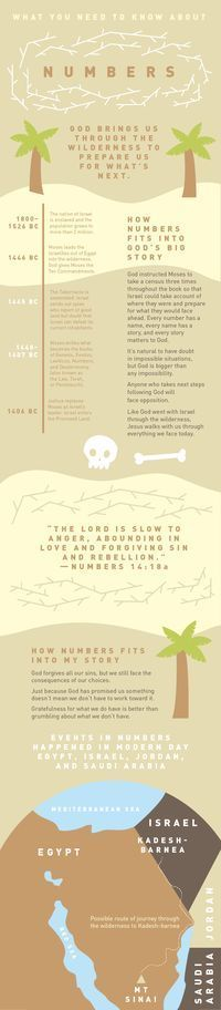 Everything You Need To Know About Numbers | Bible Need To Know | NewSpring Church