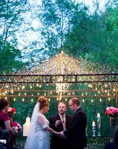 Very pretty fairy lights just use gazebo with out cover