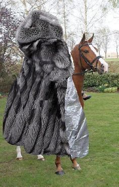 elegant lady riding her horse in her huge sliver fox coat | fur