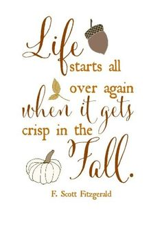 This quote embodies are feelings about fall. Can anyone else relate?
