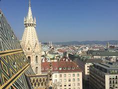 Apen matkat: Wien osa 10, maisemia tornista, lounaaksi jäätelöä, illalliseksi Wieninleike Paris Skyline, Louvre, Building, Travel, Viajes, Buildings, Destinations, Traveling, Trips