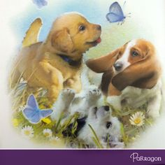 """Love our adorable """"Muddypaws""""? We are giving away a copy of 'Muddypaws' New Friends' this Friday! Don't forget to like us on Facebook & stay tuned! http://on.fb.me/1cxfsgx"""