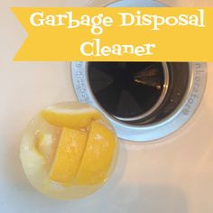 I love these easy to make Garbage Disposal Cleaners.