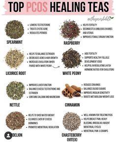 Natural Health Remedies, Herbal Remedies, Pcos Diet Plan, Herbs For Health, Salud Natural, Healing Herbs, Holistic Healing, Herbal Medicine, Natural Medicine