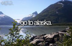 Visit Alaska, see glaciers, go hiking and fishing, explore a mountain and get lost in the woods.