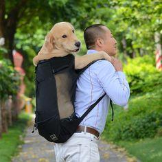 Us 1749 30 Off Breathable Pet Dog Carrier Bag For Large Dogs Golden Retriever Bulldog Backpack Adjustable Big Dog Travel Bags Pets Products In Dog Dog Carrier Bag, Pet Travel Carrier, Dog Travel, Travel Bags, Dog Backpack, Hiking Backpack, Dog Grooming Clippers, Pet Bag, Dog Collar Tags