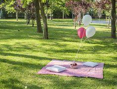 La chica de la casa de caramelo: El segundo cumpleaños de Miranda: picnic party Picnic Birthday, 6th Birthday Parties, Baby Birthday, Picnic Themed Parties, Picnic Engagement, Picnic Decorations, 1st Birthday Photoshoot, Picnic Set, Party Themes