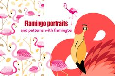 Flamingo patterns and portraits by Tanor on @creativemarket