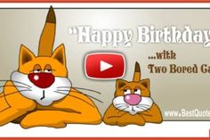 Two Bored Cats Happy Birthday Greeting Video Birthday Card Gif, Birthday Party Places, Happy Birthday Video, Happy Birthday Greetings, Birthday Messages, Happy Birthday Wishes For Him, Birthday Songs, Birthday Parties, Loving You For Him