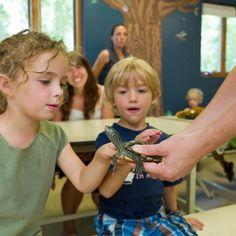 Visites insolites au Zoo Ecomuseum