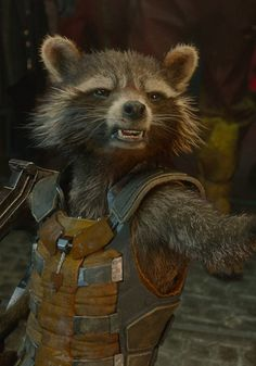 """""""What, so they can turn him into a freakin' chair?!!"""" *Rocket says to who he calls, """"Whitey"""" or also known as the collector* (correct me if I'm wrong)"""