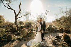 @blossomevents posted to Instagram: Desert style wedding with the perfect desert backdrop. 🌵💕 📷 - @ruthmariephotography #blossomeventsco #weddingplanner #palmspringswedding #palmspringsweddingplanner #destinationwedding #palmspringsbride #palmdesertwedding #weddingideas #weddinginspiration #bohowedding #weddingday #weddingplanning #bridetobe #engaged #thelivingdesert #zoowedding #thelivingdesertwedding #weddinginspo #bride #weddingdress #instawedding #followfriday