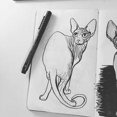 Only shades left to do Work in progress #sphynx #sphynxkitten #sphynxlove #sphynxlife #sphynxclub #sphynxtattoo #sphynxtagram #sphynxismyworld #catdrawing #catillustration #illustrator #catsofworld #brush #brushpen #illustration #illustrations #drawings #drawingsofinstagram #drawsomething #sketchbook #sketchbooks #sketch #sketchbookskool #moleskine #moleskineart #artsy #wrinklycat #catillustration
