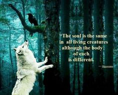 The soul is the same