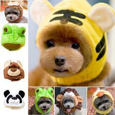Gmarket - Pet hat / S/M/L / dog accessories / animal ear /