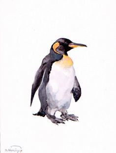 Penguin original watercolor painting 12 X 9 in by ORIGINALONLY, $28.00